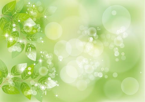 Glittering leaf 19