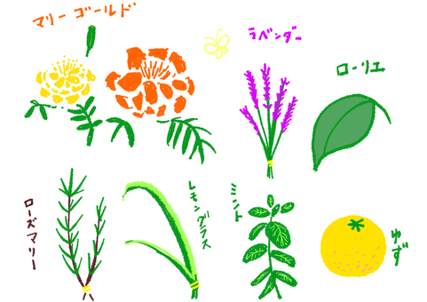 7 herbs + hand-painted name