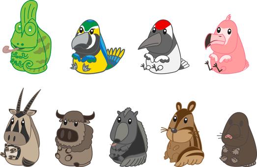 Zoo animals set 7