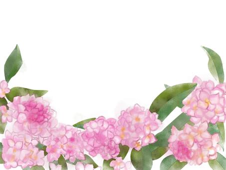 Sinking flowers (ginkgo)