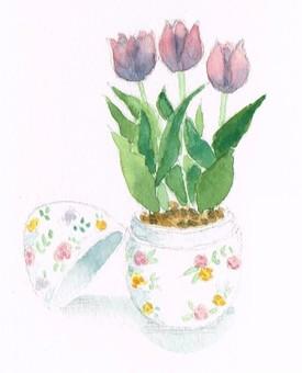 튤립 꽃 수채화