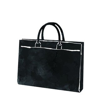 Business bag 2