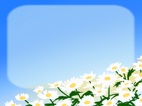 Frame card daisies flowers