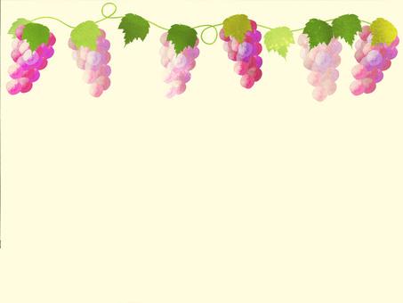 Grape frame 2.2