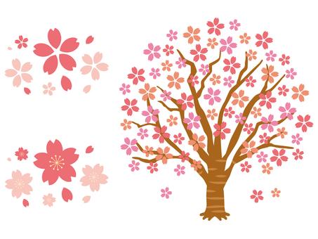 桜の木/まとめ/セット