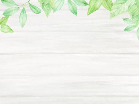 Leaf and white board frame
