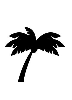 Palm tree - Silhouette