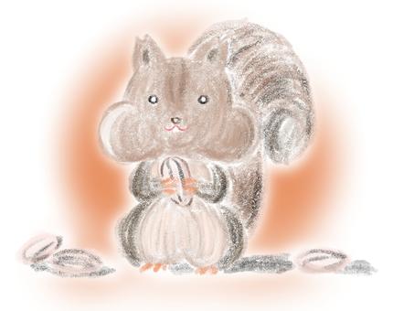 松鼠咀嚼向日葵種子