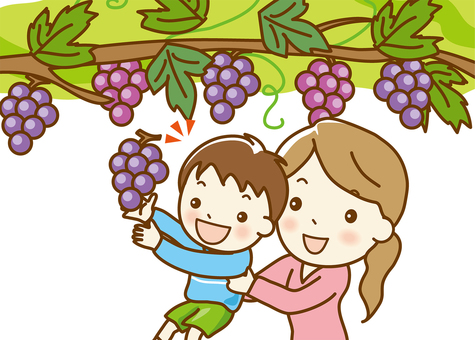 """Grape picking"" 01 up"