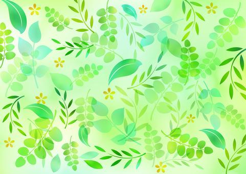 Fresh green material 41