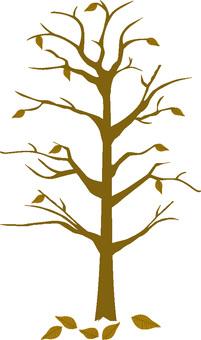 Tall tree 2