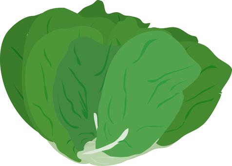 Food series vegetable salad