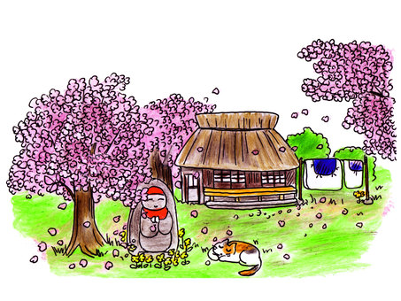 Cherry blossoms and old houses