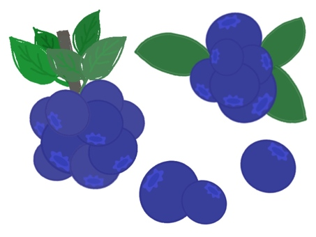 Assorted blueberries