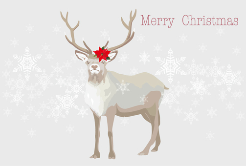 Reindeer's Christmas card