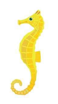 魚 -  8海馬
