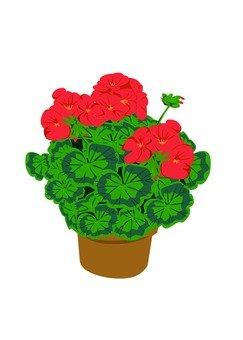 Flowerpot and flower
