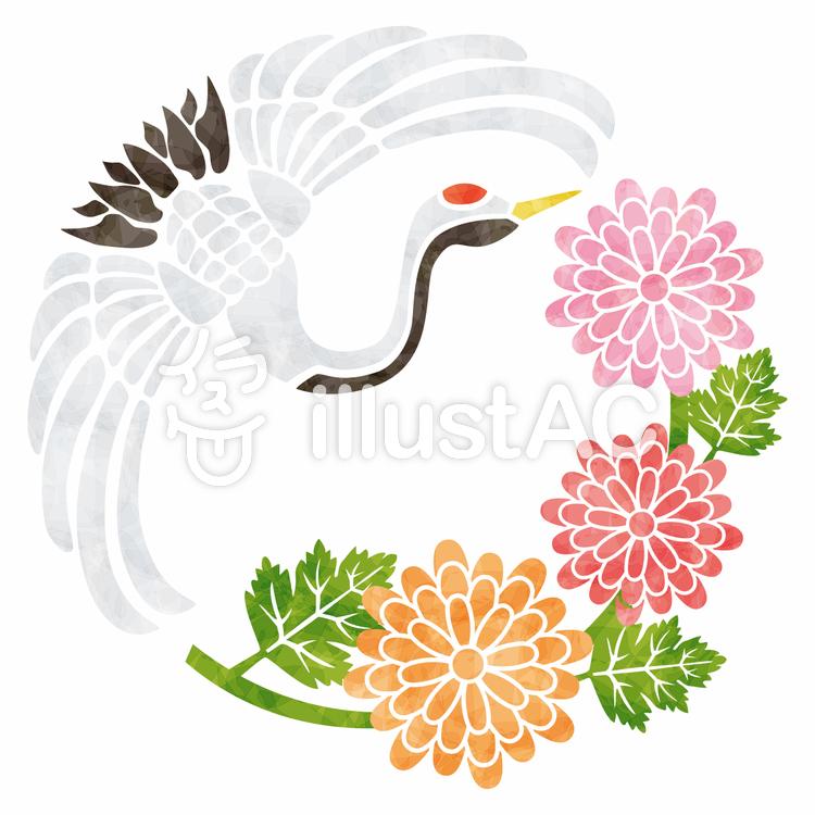 菊と鶴/和柄のイラスト