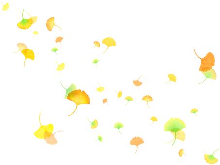 Ginkgo (no background)