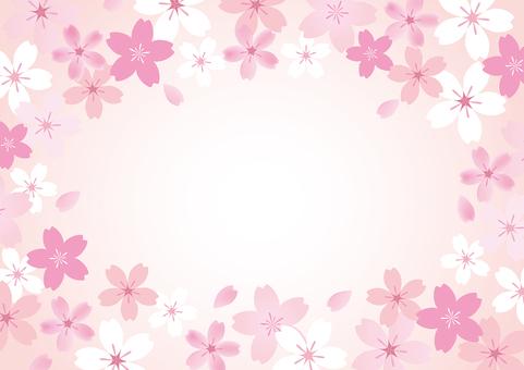 벚꽃 45