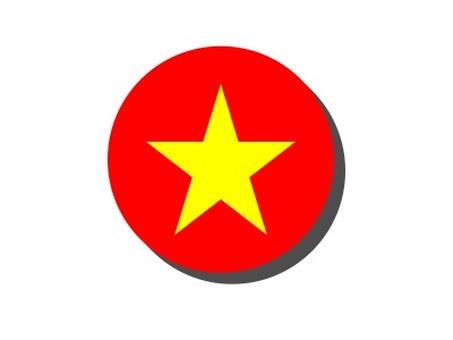 베트남 국기 원형 아이콘
