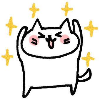 Yayed cat