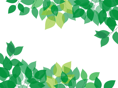 Fresh green image background illustration
