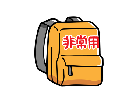 Emergency carry bag (backpack)