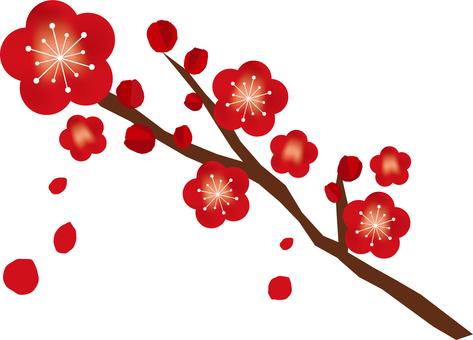 梅の花が咲いた枝/和風素材