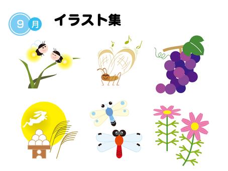 Season's illustration September