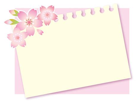 Sakura's memo card