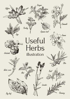 Useful herbal illustrations