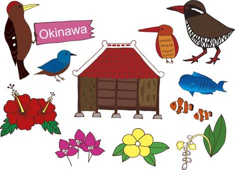 Okinawa material set