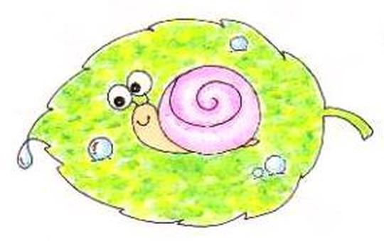 Snail Snail ♪