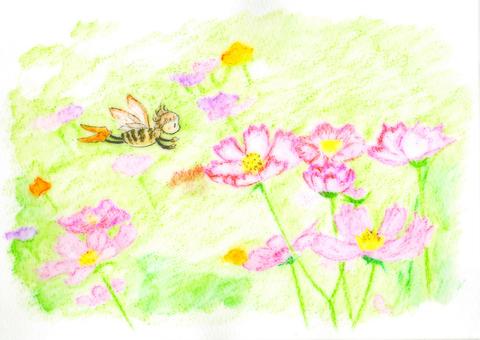코스모스와 꿀벌 요정