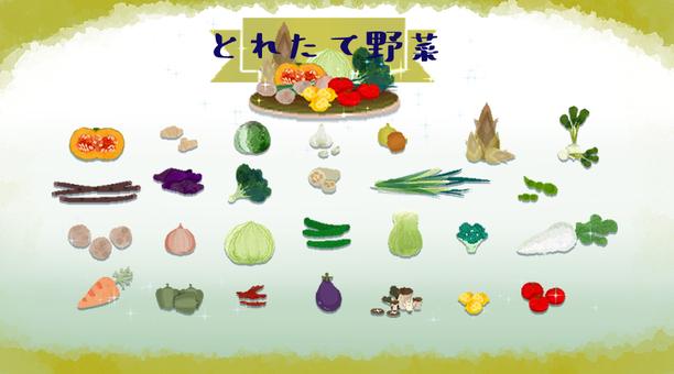 [Fresh vegetables] Set