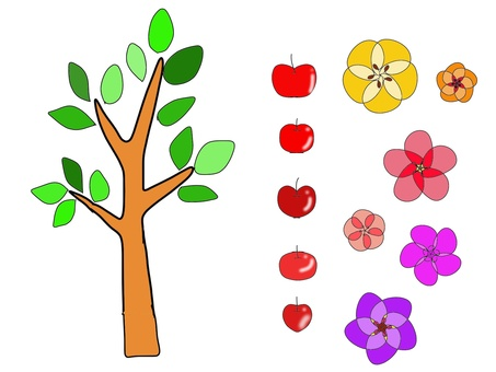 사과와 花の木