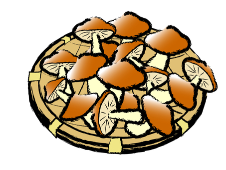Japanese style mushroom shiitake