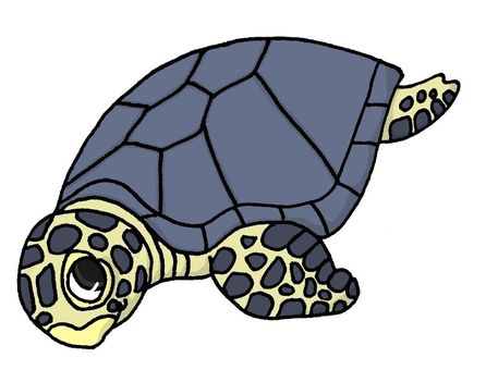 Pop green turtle