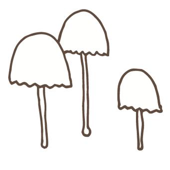 버섯 -57