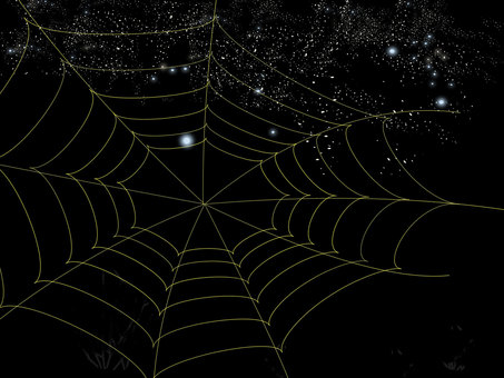 A spider's nest in the starry sky
