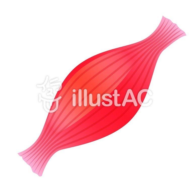 Imágenes prediseñadas gratis: El tejido muscular, rojo, disección ...