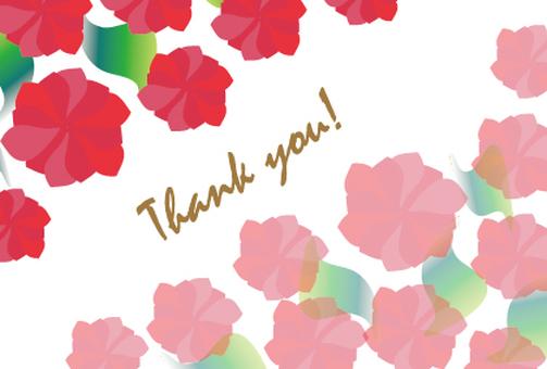 붉은 꽃의 메시지 카드 감사