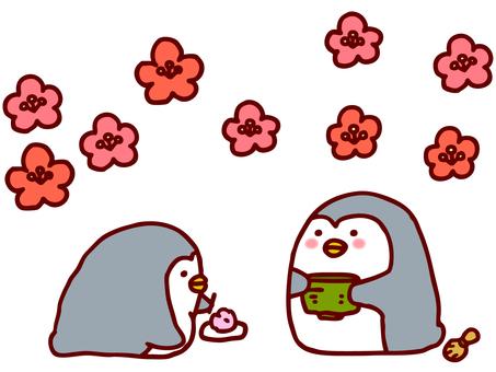 Tea ceremony Penguin