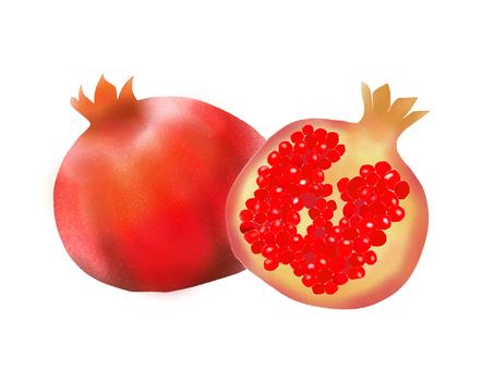 석류 (석류)