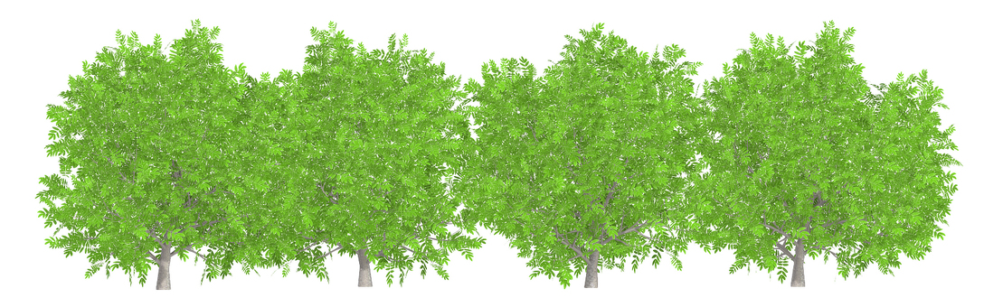 tree_005_hedge_02
