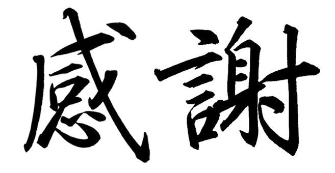 "Handwritten calligraphy ""thank you"" (horizontal)"