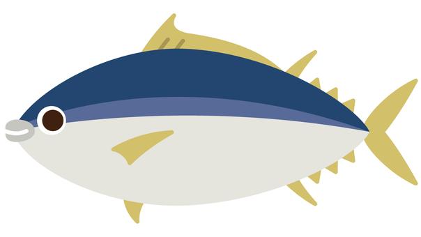 바다 생물 - 참치