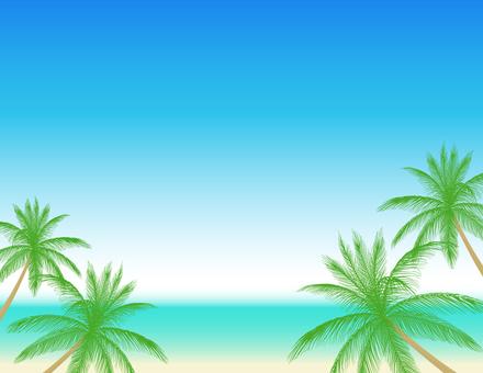 Palm tree 3_ Landscape