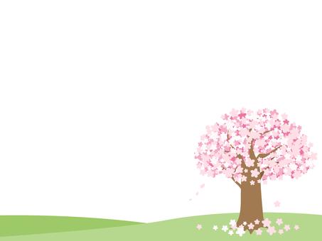 Cherry tree's decorative frame